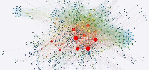 Network Analysis Service in Biology