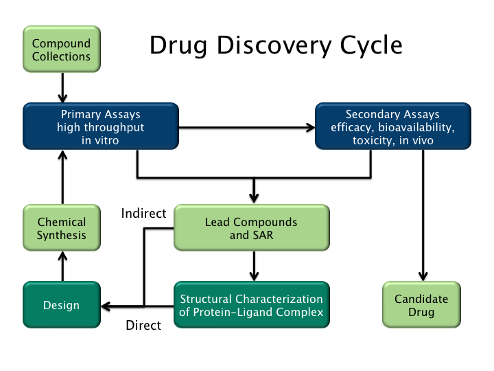 Drug Design Services