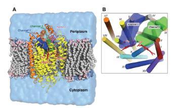 Applications of Molecular Dynamics Simulation