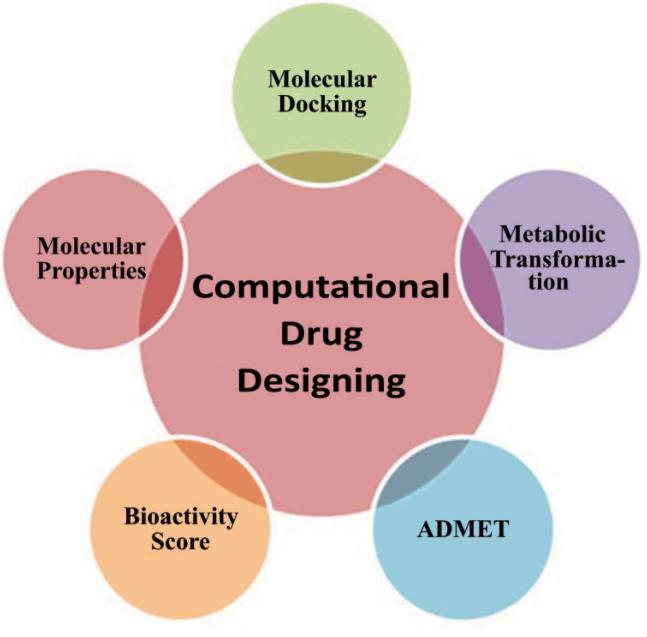 Computer Aided Drug Design Service.