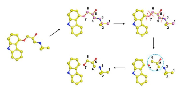 Fragment-based Approach to Design GPCR Ligand Service 1
