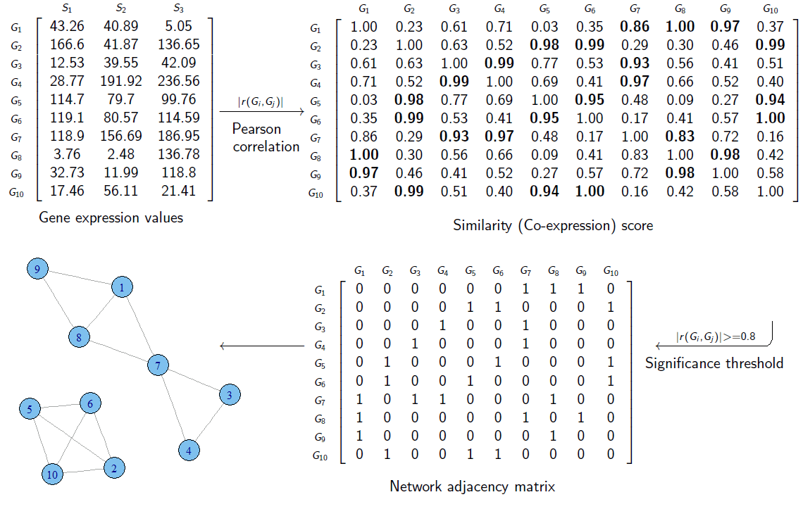 The two general steps for constructing a gene co-expression network: calculating co-expression score.