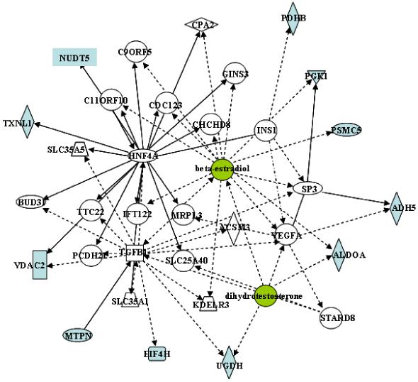 IPA analysis 3