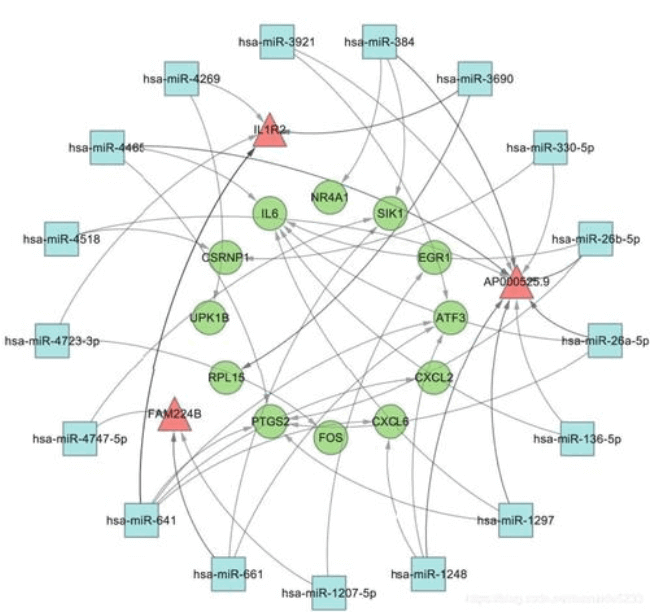 MicroRNA and Target Gene Network Diagram Service 3