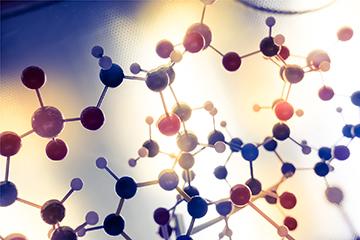 Molecular Docking Software