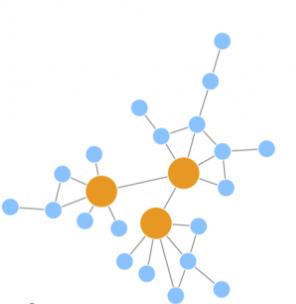 Network Analysis Service in Biology 1