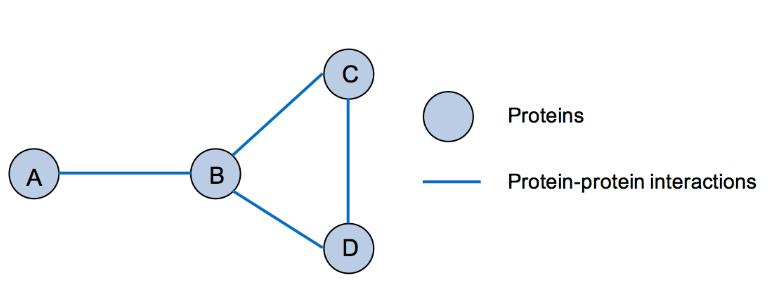 Network Analysis Service in Biology 3