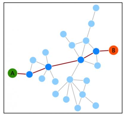 Network Analysis Service in Biology 2