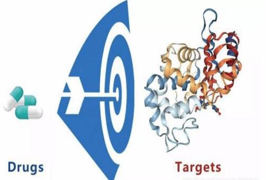 Target Prediction Service