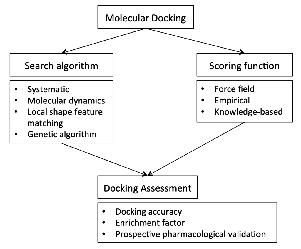 Overview of Molecular Docking
