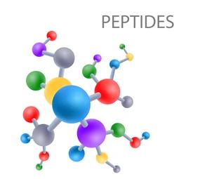 computational peptide services