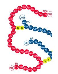 computational peptide
