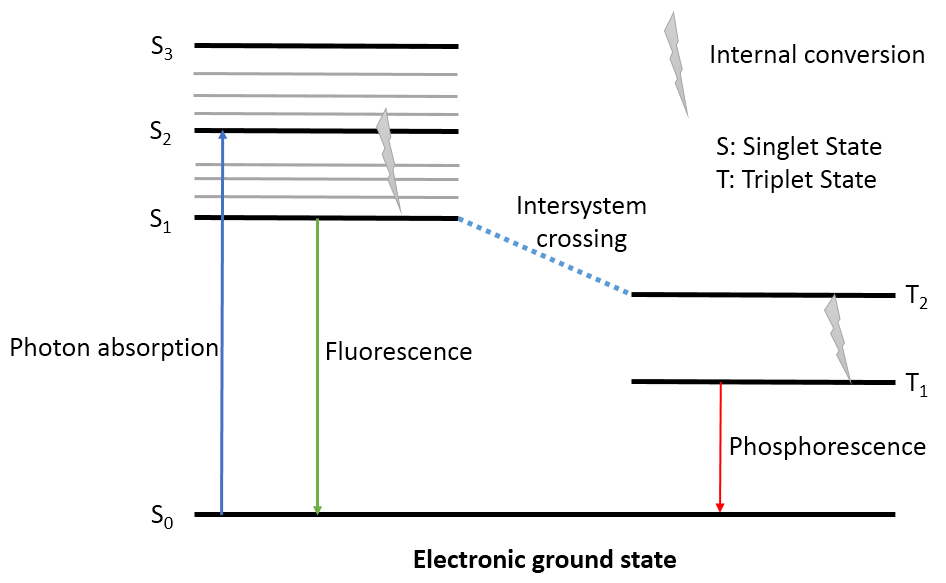 Excited state and fluorescence, phosphorescence.