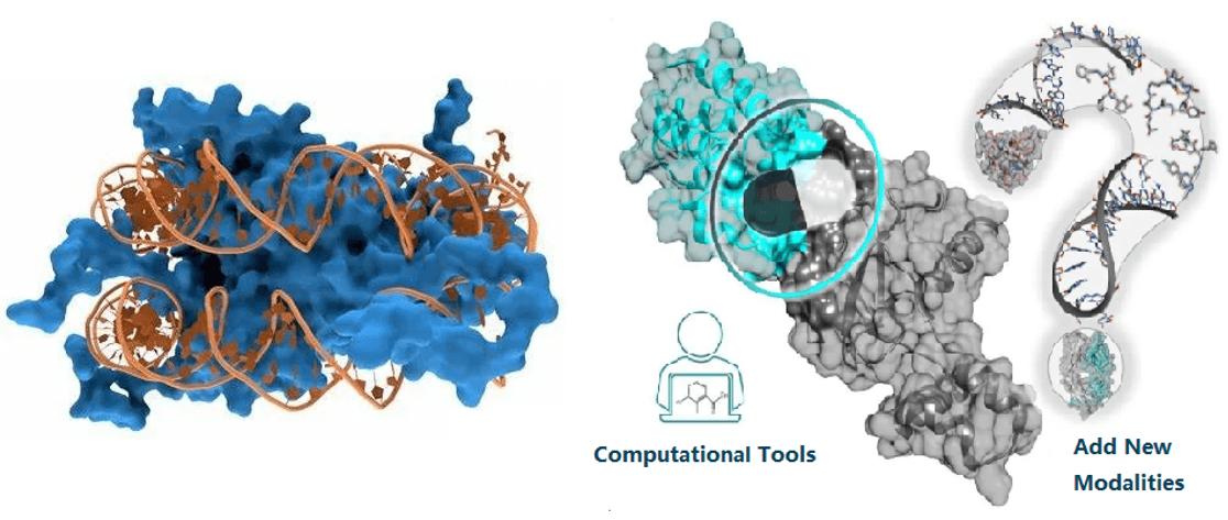 Protein-DNA interaction