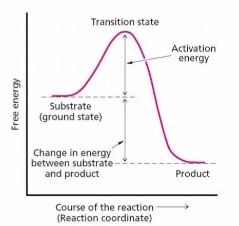 Transition State Calculation Service 1