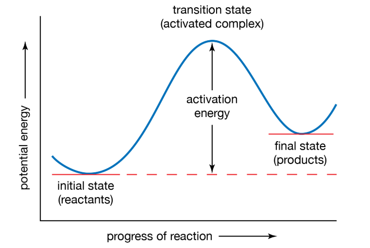 Transition State Calculation Service 3