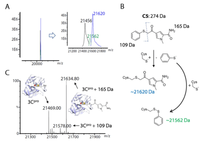 Skeleton transition and the discovery of C5 compounds.
