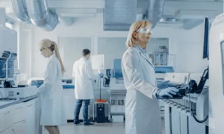 Lipid molecular dynamics simulation service 1