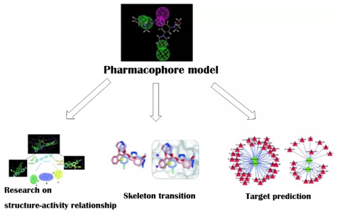 Applications of Pharmacophore Model Construction Service