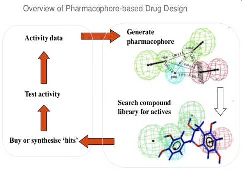 Overview of pharmacophore-based drug design.