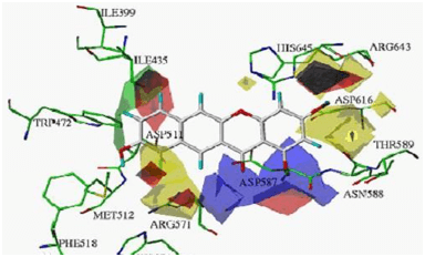 Pharmacophore Model Service without Protein Structure and without Ligand Structure 1