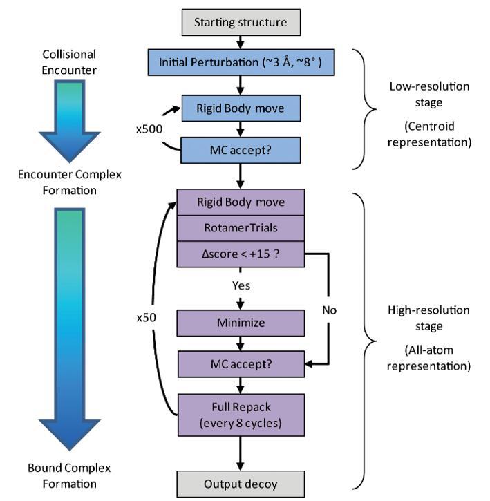 The RosettaDock algorithm.