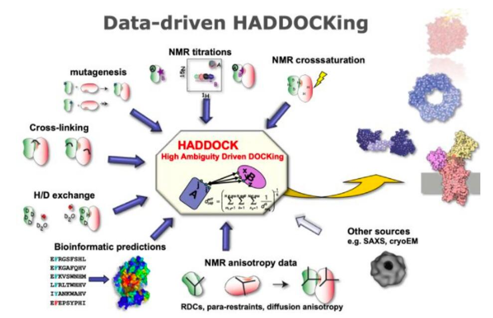 Data-driven HADDCOKing.