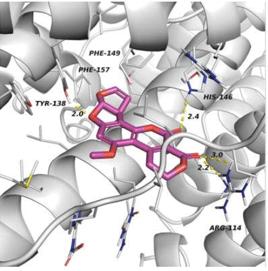 Protein-Small Molecule Docking Service