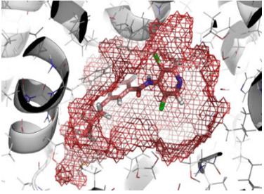 Protein-Small Molecule Docking Service 1