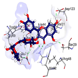 Protein-Small Molecule Docking Service 2