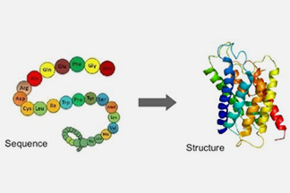 Protein Structure Modeling Service