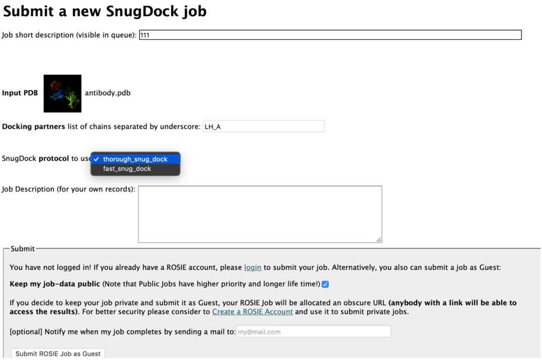 SnugDock job
