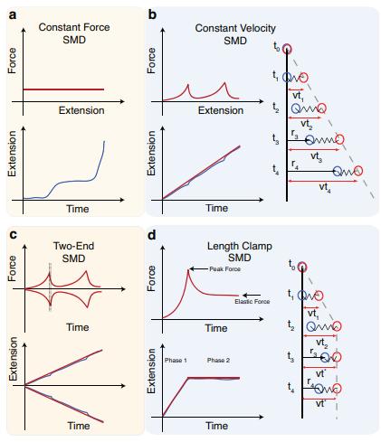 Steered molecular dynamics (SMD) service